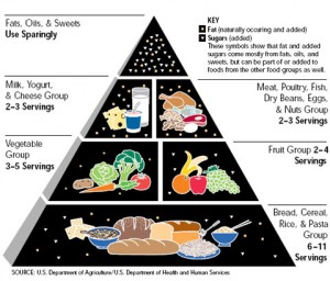 USDA-old-food-pyramid